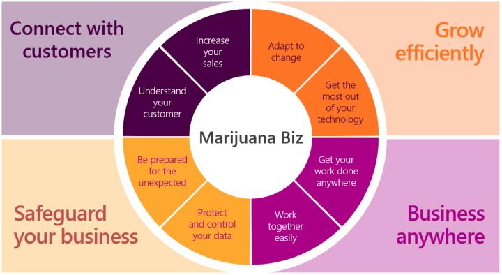 MarijuanaBiz2